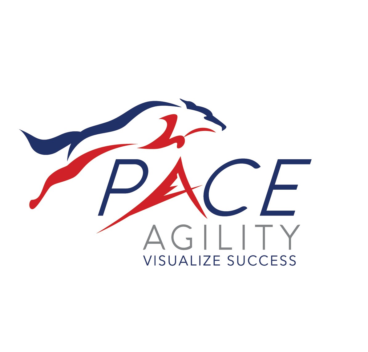 Welcome to Pace Agility
