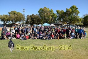 Power Paws Camp 2014